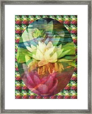 Lily Birth Framed Print