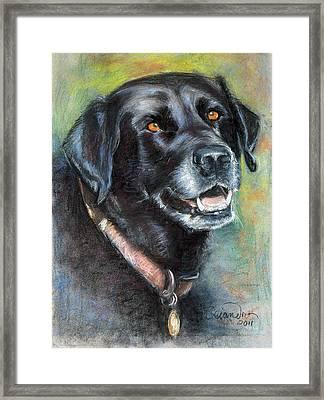 Lily- Black Labrador Retriever Framed Print by Sciandra