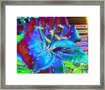 Lily. Blue Lily Framed Print