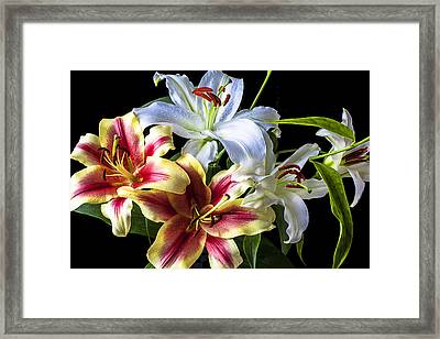 Lily Bouquet Framed Print by Garry Gay