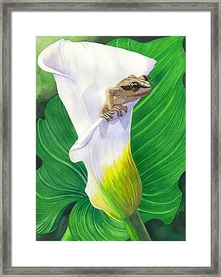 Lily Dipping Framed Print by Catherine G McElroy