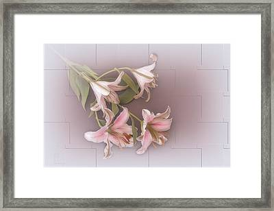 Lily Framed Print by Elaine Teague