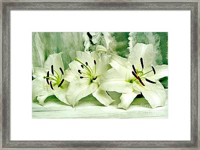 Lily Family Framed Print by Marsha Heiken