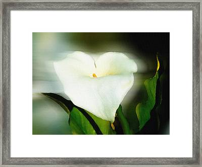 Lily Faux Watercolor Framed Print by Frank Bright