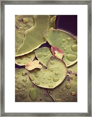 Lily Heart Framed Print
