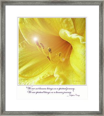 Lily In Full Bloom Framed Print