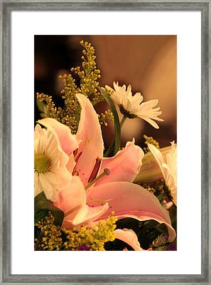 Lily In Pink Framed Print