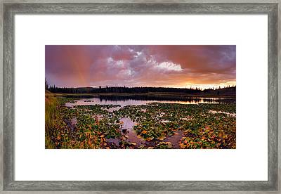 Lily Lake Framed Print