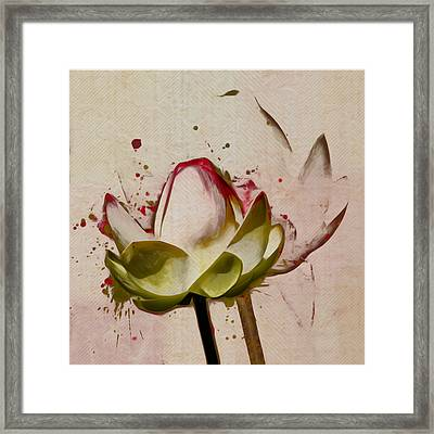 Lily My Lovely - A444csq Framed Print by Variance Collections