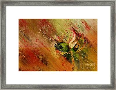 Lily My Lovely - S23ad Framed Print by Variance Collections