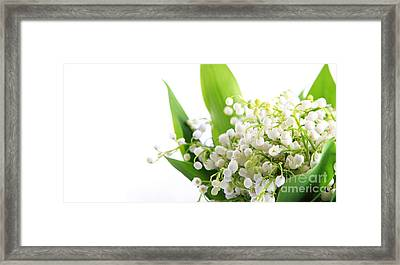 Lily Of The Valley Art Framed Print by Boon Mee