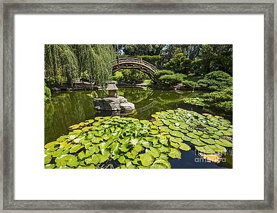 Lily Pad Garden - Japanese Garden At The Huntington Library. Framed Print by Jamie Pham