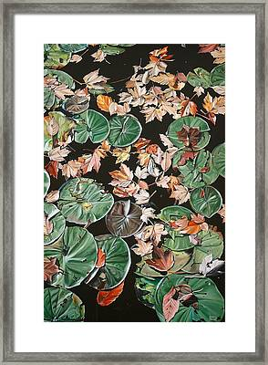 Lily Pads And Leaves Framed Print by Anthony Mezza