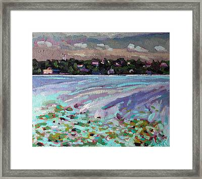 Lily Pads And Lilacs Framed Print by Phil Chadwick