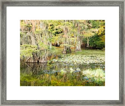 Lily Pads And Reflections Framed Print by Geoff Mckay