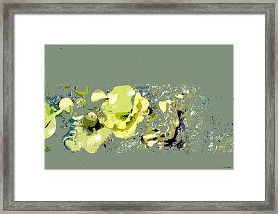 Lily Pads - Deconstructed Framed Print