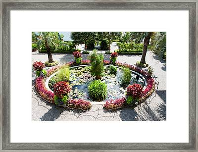 Lily Pads In A Pond, Isola Madre Framed Print by Panoramic Images