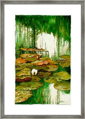 Reflections Among The Lily Pads Framed Print