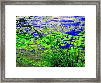 Lily Pads On The Lachine Canal Summer Landscape Scenes Colors Of Quebec Art Carole Spandau Framed Print