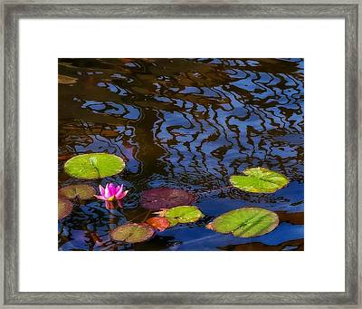 Lily Pond Abstract A Study In Patterns Framed Print