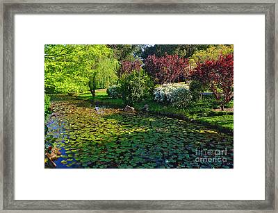 Lily Pond And Colorful Gardens Framed Print by Kaye Menner