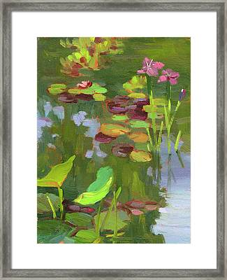 Lily Pond Framed Print by Diane McClary