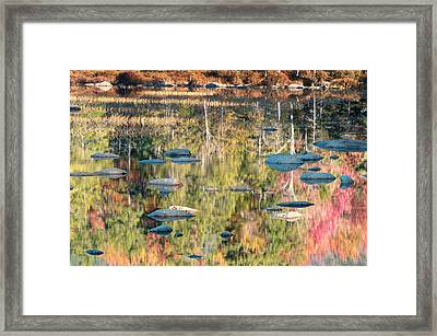 Lily Pond Reflections-white Mountains Nh Framed Print by Thomas Schoeller