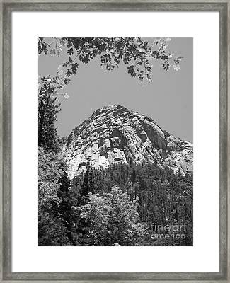 Lily Rock In Black And White Framed Print