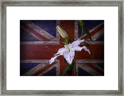 Lily With British Flag Framed Print