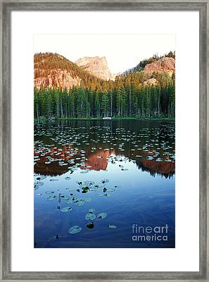 Lilypad Pond With Hallet Peak Framed Print