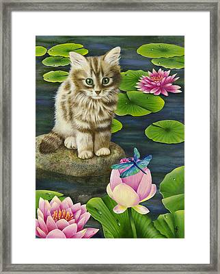 Lilys Pond Framed Print