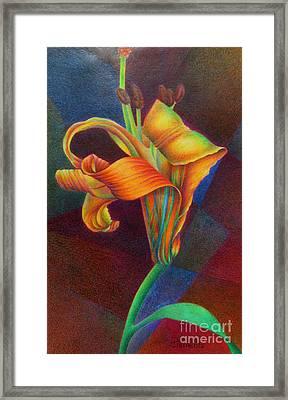 Lily's Rainbow Framed Print