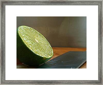Framed Print featuring the photograph Lime Blade by Joe Schofield