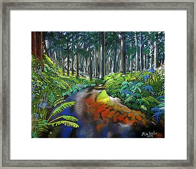 Lime Creek Framed Print