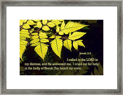 Lime Plant Leaves Jonah 2v2 Framed Print