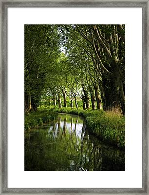 Lime Trees On Feeder To Canal Du Midi Framed Print by George Munday