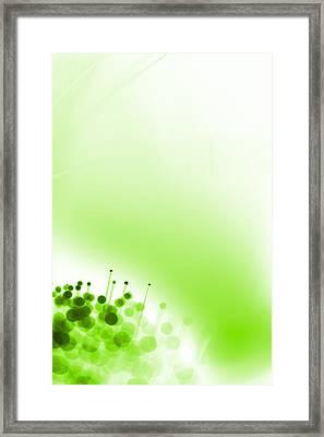 Limelight Framed Print