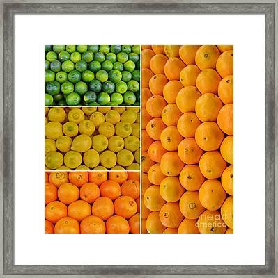 Limes Lemons Oranges Framed Print by Sabine Jacobs