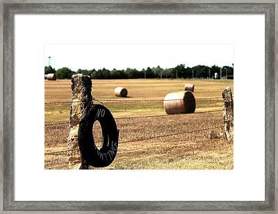 Limestone And Hay Framed Print