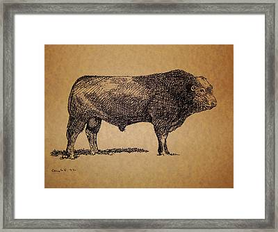 Framed Print featuring the drawing French Limousine Bull by Larry Campbell