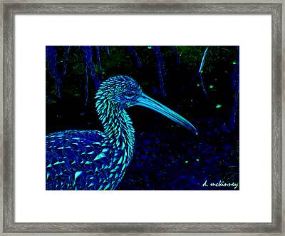Limpkin Framed Print by David Mckinney