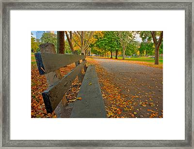 Lincoln Park Bench In Fall Framed Print