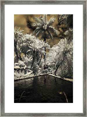 Lincoln Road Pool Framed Print