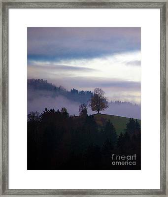 Linden Berry Tree And Fog 2 Framed Print