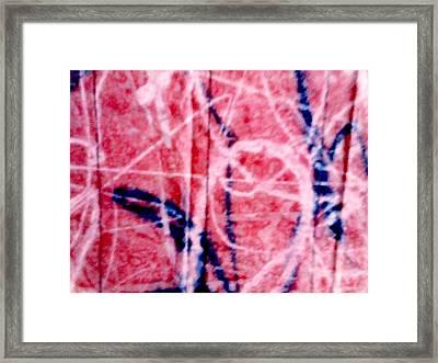 Line-candy Framed Print by Dorothy Rafferty