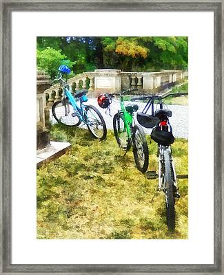Line Of Bicycles In Park Framed Print by Susan Savad