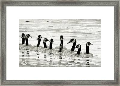 Line Of Geese Framed Print