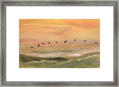 Line Of Pelicans Framed Print by Julianne Felton
