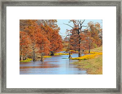 Lined In Yellow Framed Print