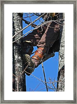 Framed Print featuring the photograph Lineman by Denise Romano
